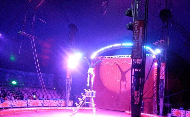 Una noche en el circo Hermanos Fuentes Gasca 3