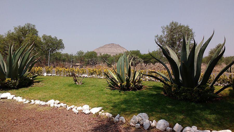 mayahuel teotihuacan