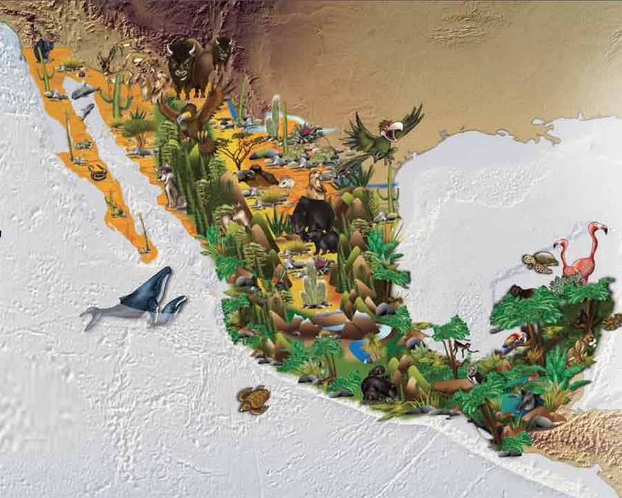biodiversidad de México