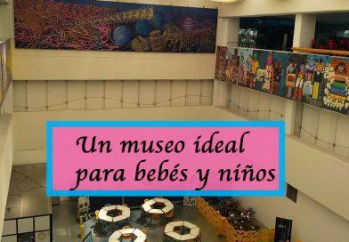 Un museo ideal para bebés y niños, Universum